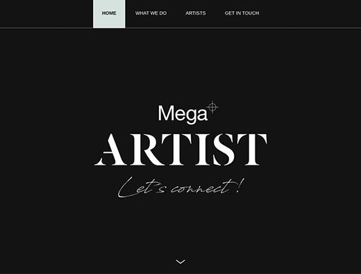 Mega ARTIST